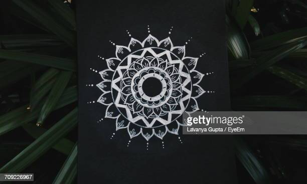 Directly Above Shot Of Mandala Artwork On Paper By Plants At Night