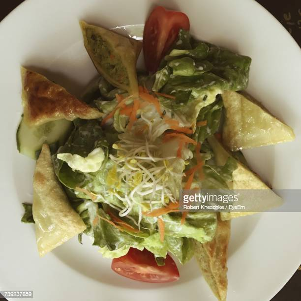 Directly Above Shot Of Maultaschen With Salad In Plate