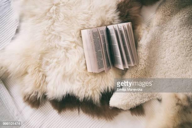 directly above shot of open book on bed - pele de animal material têxtil - fotografias e filmes do acervo