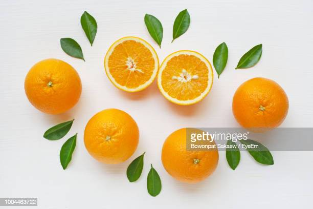 directly above shot of oranges on white background - oranje stockfoto's en -beelden