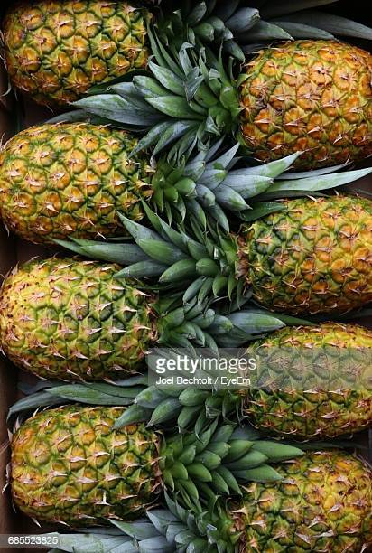 Directly Above Shot Of Pineapples