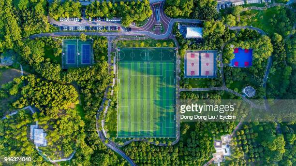 Directly Above Shot Of Playing Fields Amidst Green Trees