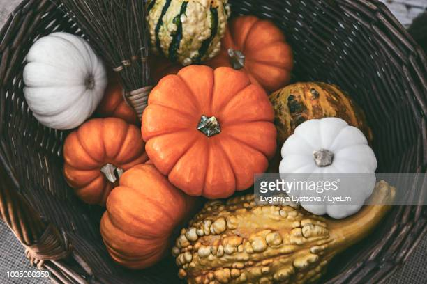 directly above shot of pumpkins in wicker basket - pumpkin stock pictures, royalty-free photos & images