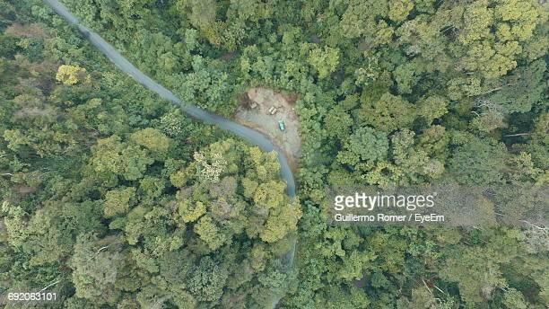 Directly Above Shot Of Road In Forest