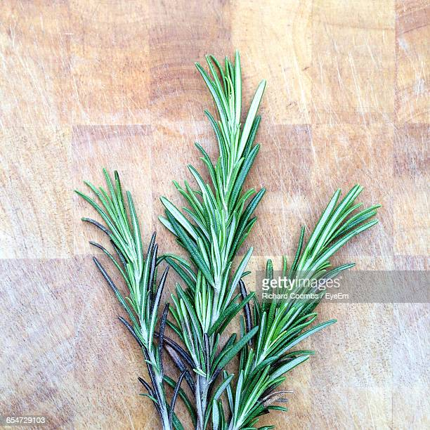 Directly Above Shot Of Rosemary On Table