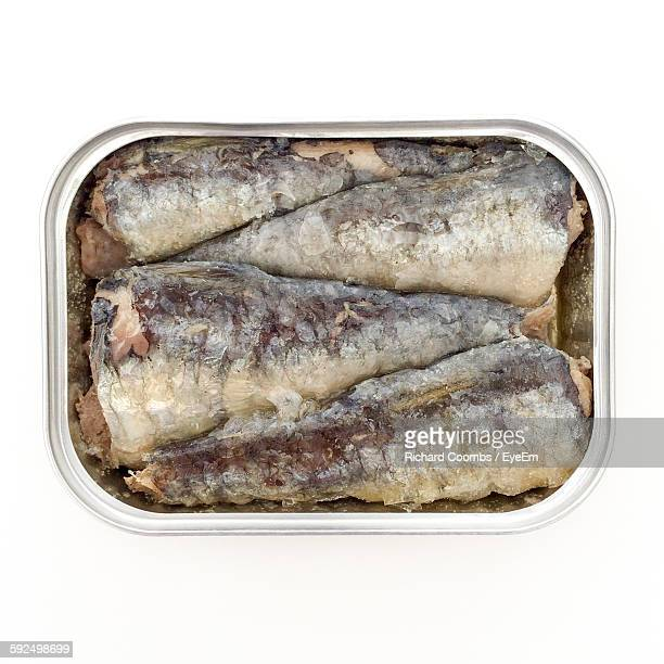 Directly Above Shot Of Sardines In Open Can Over White Background