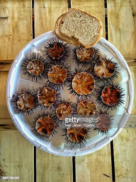 Directly Above Shot Of Sea Urchins Served In Plate On Table