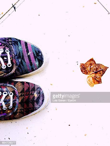 directly above shot of shoes by leaf on footpath - lola lane stock pictures, royalty-free photos & images