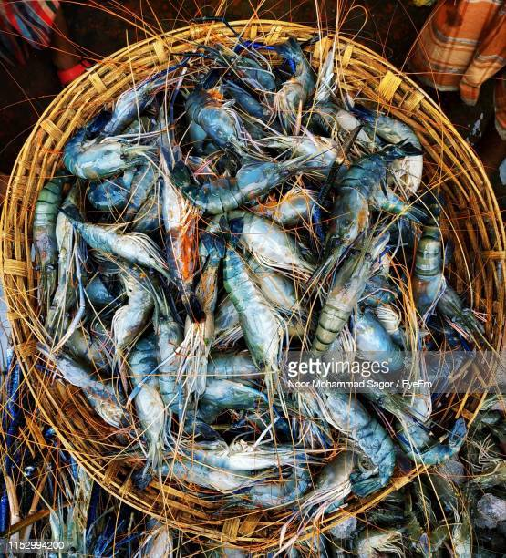 directly above shot of shrimps in basket fish for sale in market - shrimps stock pictures, royalty-free photos & images