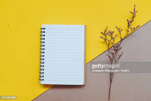 Directly Above Shot Of Spiral Notebook By Plant On Table
