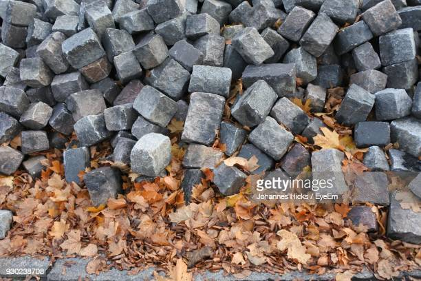 Directly Above Shot Of Stones By Autumn Leaves