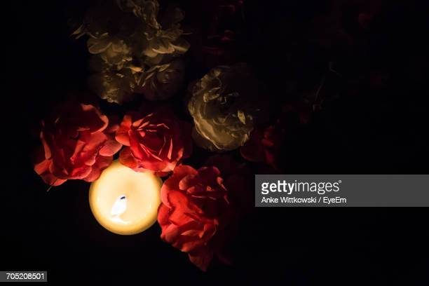 Directly Above Shot Of Tea Light Candle Surrounded By Roses In Darkroom