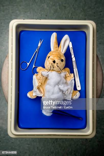 Directly Above Shot Of Toy With Surgical Equipment In Medical Tray On Table