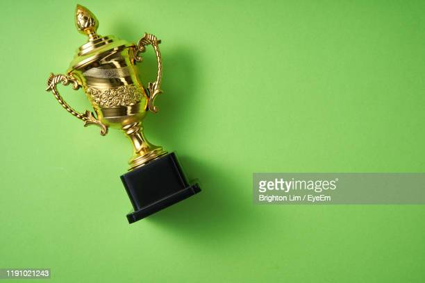 directly above shot of trophy against green background - trophy stock pictures, royalty-free photos & images