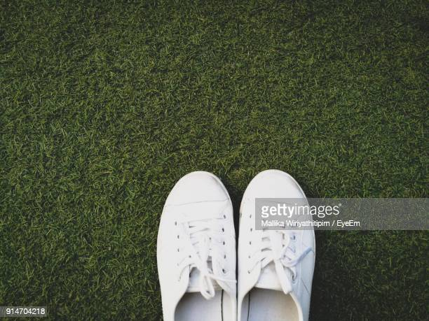 Directly Above Shot Of White Shoes On Grassy Field