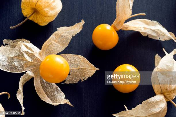 directly above shot of winter cherries on table - chinese lantern stock pictures, royalty-free photos & images