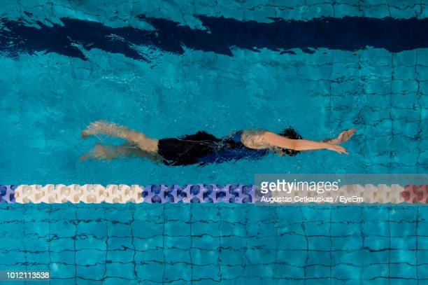 directly above shot of woman swimming in pool - length stock photos and pictures