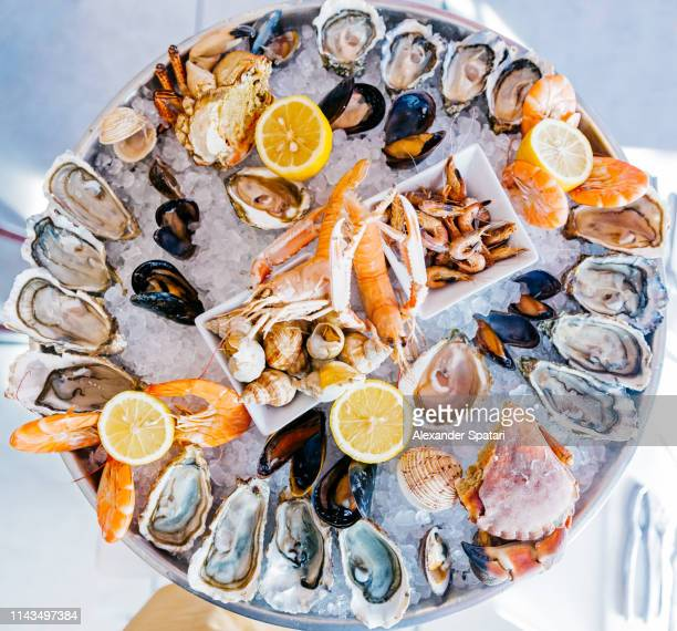 directly above view of a round seafood plate with oysters, prawns, crabs and snails - silver service stock pictures, royalty-free photos & images