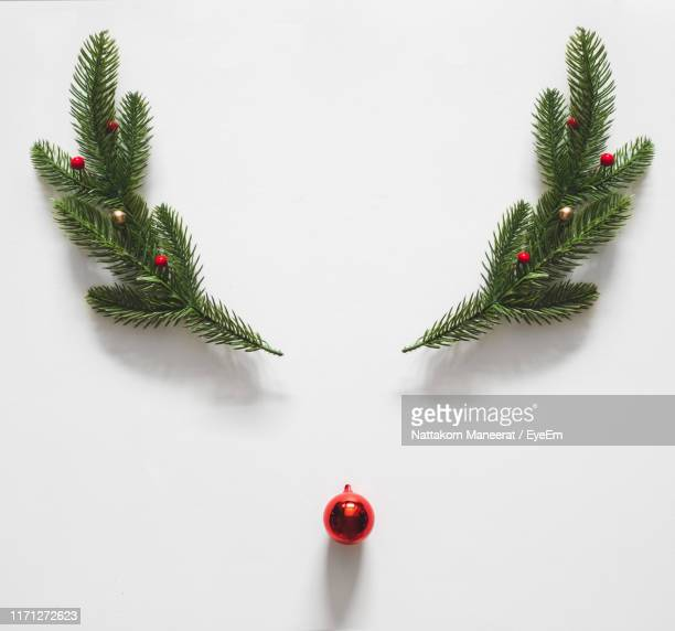 directly above view of bauble and pine needle on white background - christmas decoration stock pictures, royalty-free photos & images