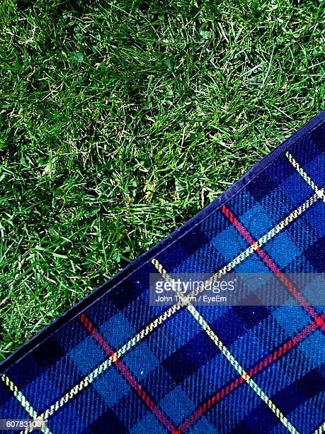 Directly Above View Of Blue Picnic Blanket On Grassy Field