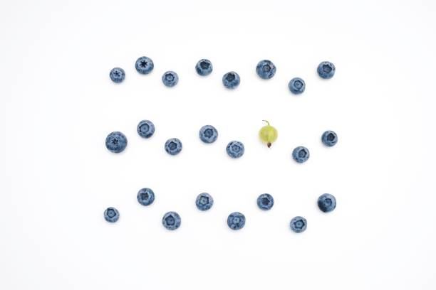 directly above view of blueberries against white background - 藍莓 個照片及圖片檔