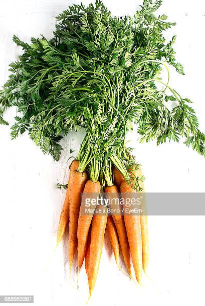 Directly Above View Of Carrots Against White Background