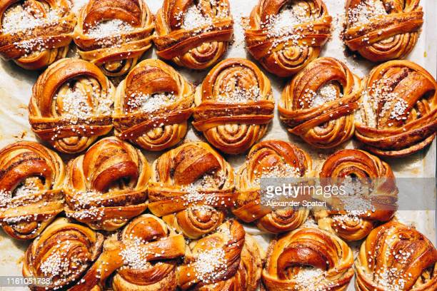 directly above view of cinnamon buns - bun stock pictures, royalty-free photos & images