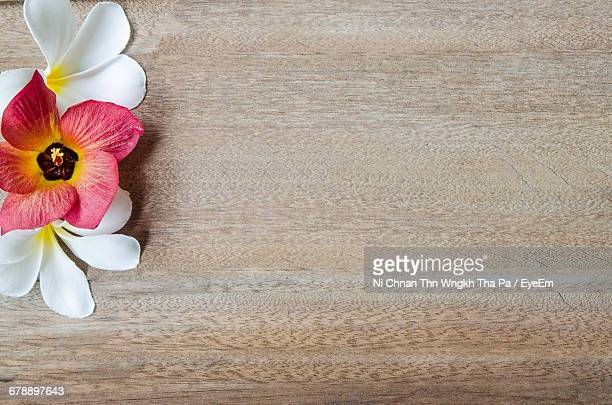 Directly Above View Of Flowers On Wooden Table