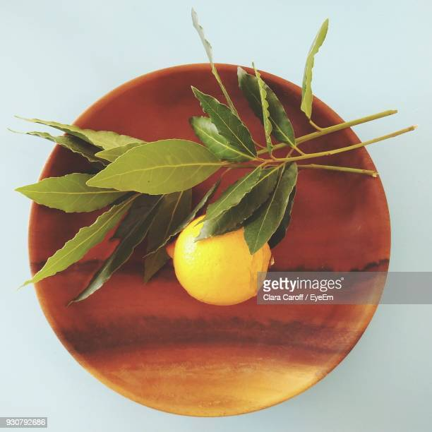 directly above view of lemon with leaves in bowl - lemon leaf stock photos and pictures