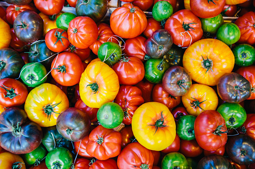 Directly above view of multicolored tomatoes on the market stall at farmer's market - gettyimageskorea