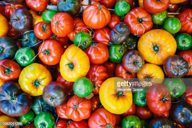 directly above view of multicolored tomatoes on the market stall at farmer's market - freshness fotografías e imágenes de stock