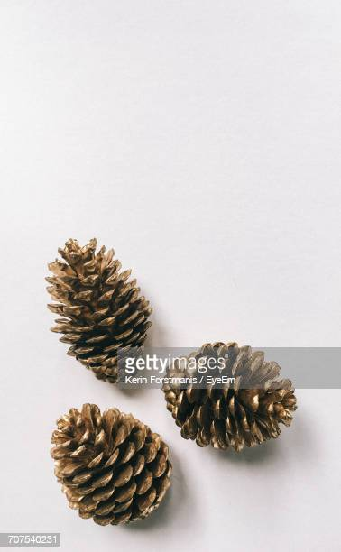 Directly Above View Of Pine Cones On White Background