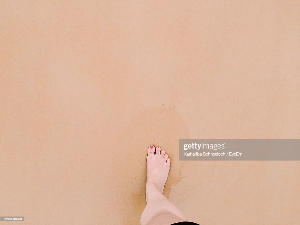 Directly Above View Of Woman Feet On Wet Sand : Stock Photo