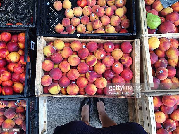 directly above view of woman standing amidst organic peach crates in market - danielle reid stock pictures, royalty-free photos & images