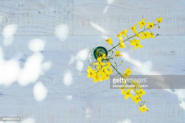 directly above view of yellow flowers in vase on table - 花瓶 ストックフォトと画像