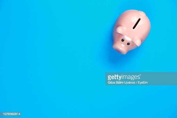 directly above views of piggy bank over blue background - piggy bank stock pictures, royalty-free photos & images