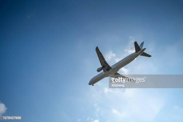 directly below shot of airplane flying in sky - hinweisschild stock-fotos und bilder