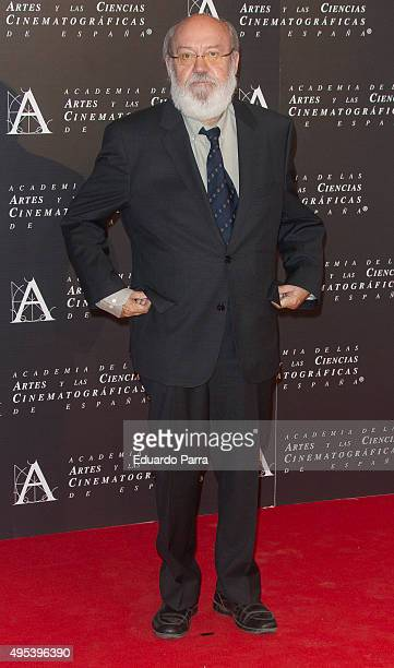 Director Jose Luis Cuerda attends the Golden Medal 2015 ceremony at Academia de Cine on November 2 2015 in Madrid Spain