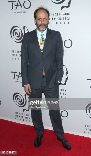Director Luca Guadagnino attends the 2017 New York Film Critics Awards at TAO Downtown on January 3 2018 in New York City