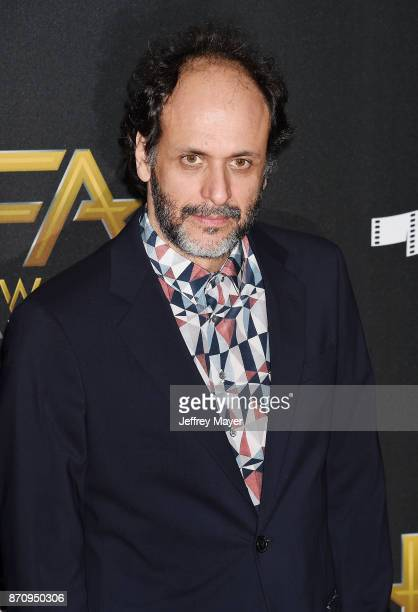 Director Luca Guadagnino attends the 21st Annual Hollywood Film Awards at The Beverly Hilton Hotel on November 5 2017 in Beverly Hills California