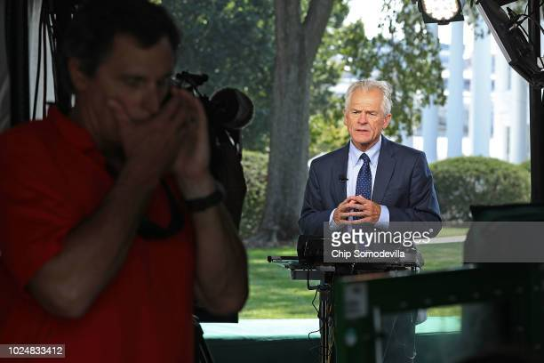 Director of the White House National Trade Council Director Peter Navarro is interviewed by FOX News on the north side of the White House August 28...