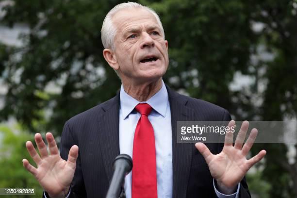 Director of Trade and Manufacturing Policy Peter Navarro speaks to members of the press outside the West Wing of the White House June 18 2020 in...