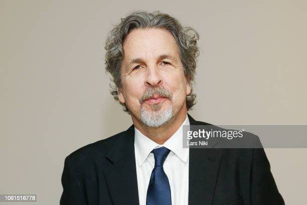Director Peter Farrelly attends The Academy of Motion Picture Arts and Sciences official screening of Green Book at the MOMA Titus 2 Theater on...