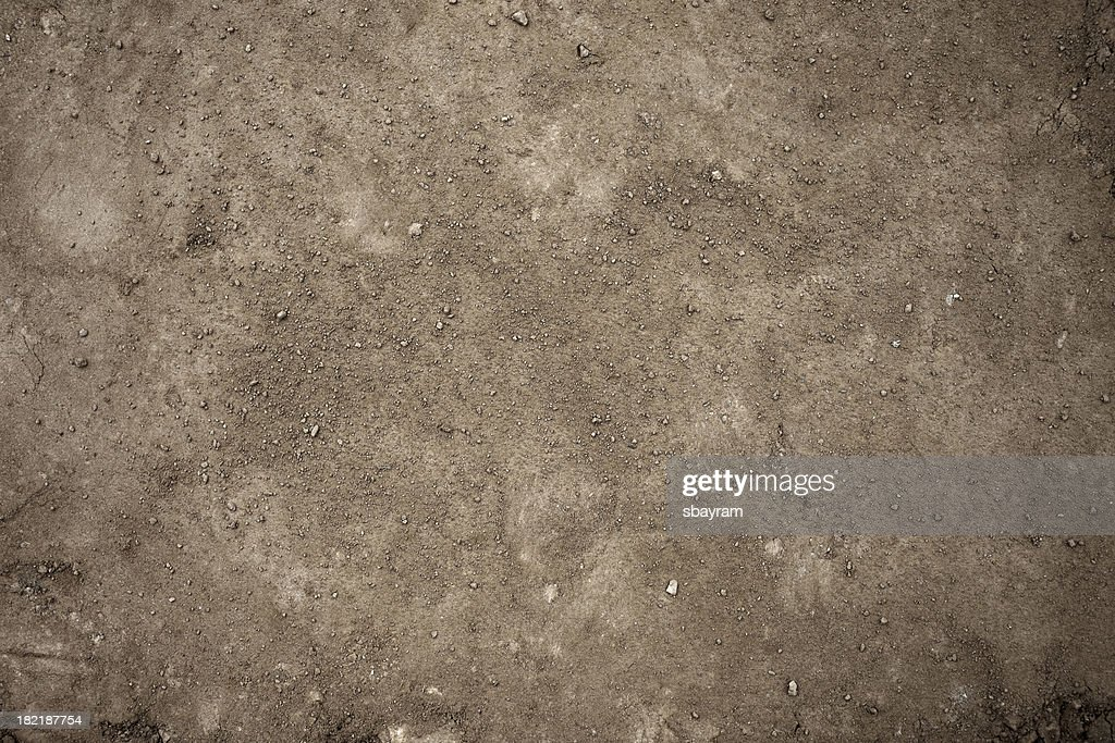 Dirt Background : Stock Photo