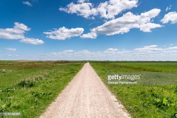 dirt footpath on a field during a summer day - ponto de fuga imagens e fotografias de stock