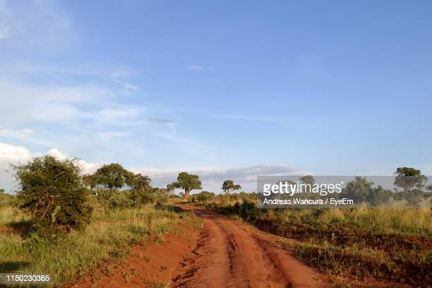 dirt road along countryside landscape - tarangire national park stock pictures, royalty-free photos & images