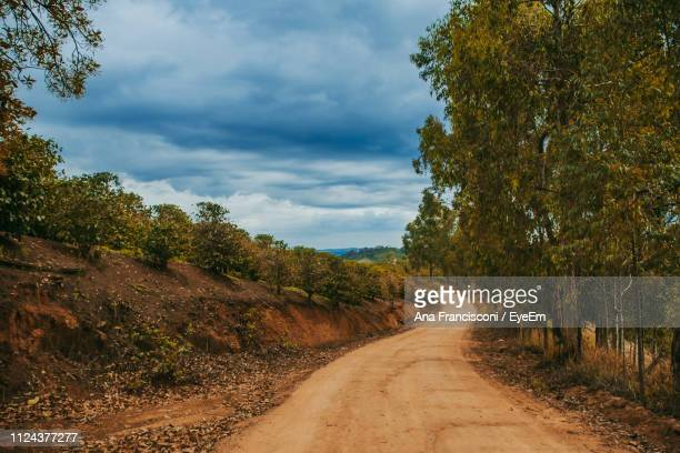Dirt Road Along Trees And Plants Against Sky