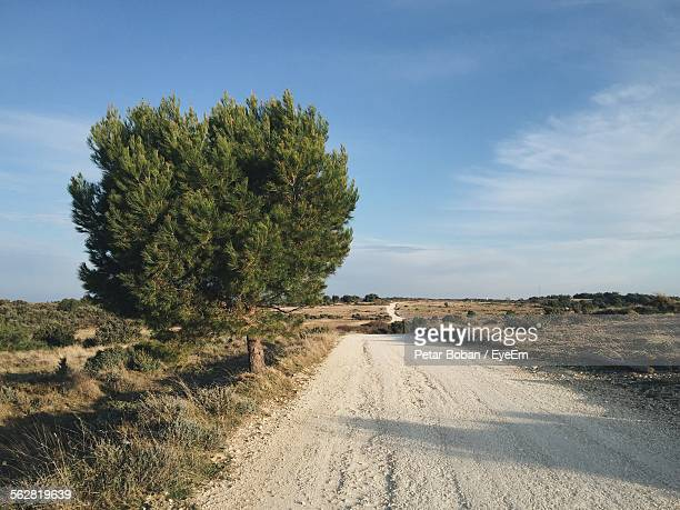 dirt road amidst field against sky - boban stock pictures, royalty-free photos & images