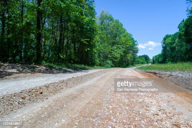 dirt road amidst forest - georgia country stock pictures, royalty-free photos & images