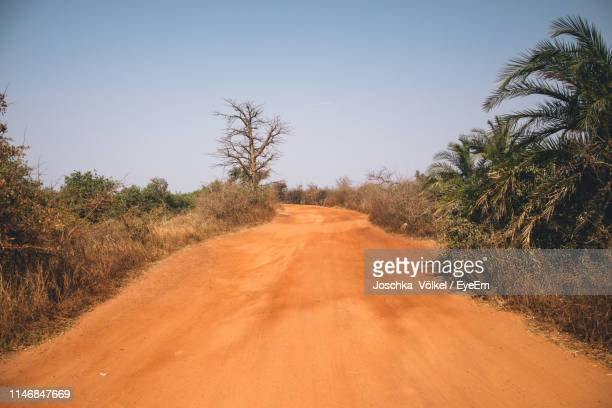 dirt road amidst trees against clear sky - banjul stock pictures, royalty-free photos & images